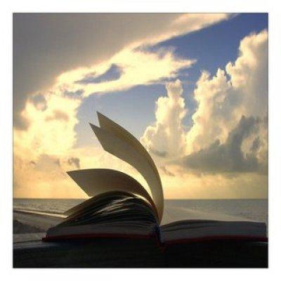 Libro cielo