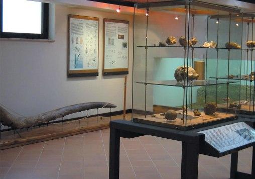 Pofi-Museopreistorico_jpg