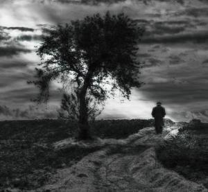 La via da seguire